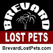 Brevard Lost Pets Logo